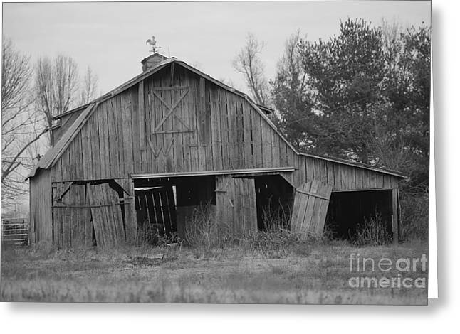 Recently Sold -  - Log Cabins Greeting Cards - barn in Kentucky  no 5 Greeting Card by Dwight Cook
