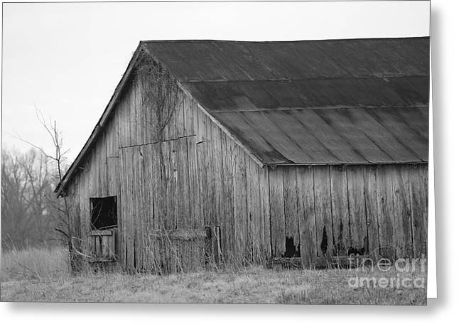 Recently Sold -  - Log Cabins Greeting Cards - barn in Kentucky no 6 Greeting Card by Dwight Cook