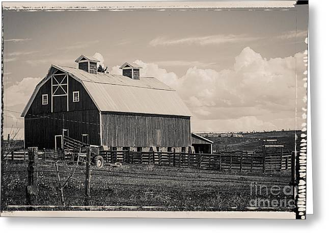 Old Western Photos Greeting Cards - Barn in Polaroid Greeting Card by Janice Rae Pariza