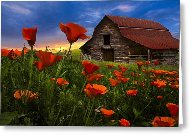 Foggy Landscapes Greeting Cards - Barn in Poppies Greeting Card by Debra and Dave Vanderlaan