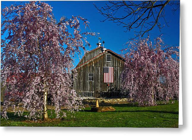Weathervane Greeting Cards - Barn in Spring Greeting Card by Sally Weigand
