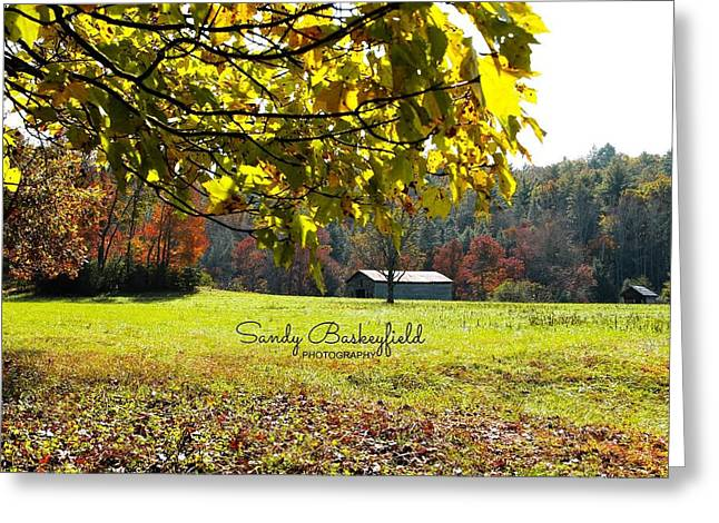 Cantilever Barn Greeting Cards - Barn in the Meadow Greeting Card by Sandy Baskeyfield