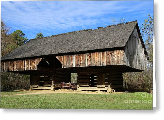 Barn Yard Greeting Cards - Barn in the woods Greeting Card by Dwight Cook