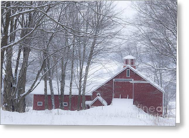 Red Roofed Barn Greeting Cards - Barn In Winter Woods Greeting Card by Alan L Graham