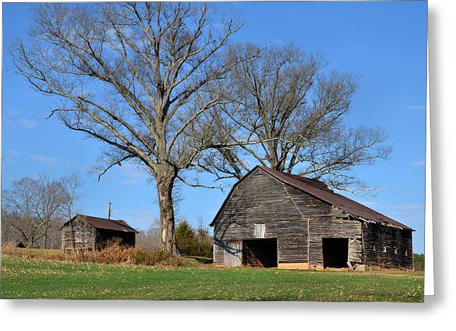 Old 421 Greeting Cards - Barn on Baltimore Road - 51008784b Greeting Card by Paul Lyndon Phillips