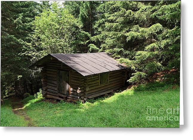 Old Barns Greeting Cards - Barn On The Forest  Greeting Card by Antonio Scarpi
