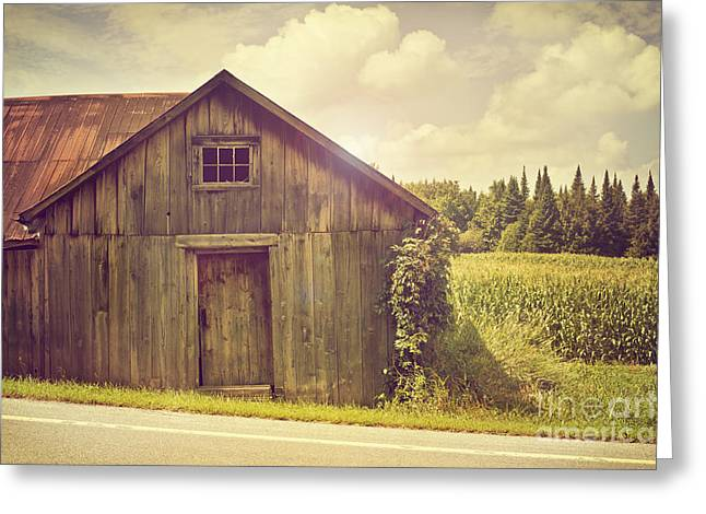 Shed Greeting Cards - Barn on the Road Greeting Card by Audrey Wilkie