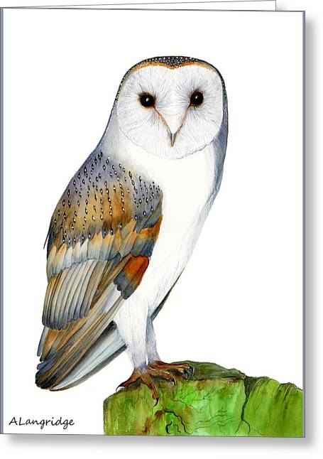 Owl Of Minerva Greeting Cards - Barn Owl Greeting Card by Alison Langridge