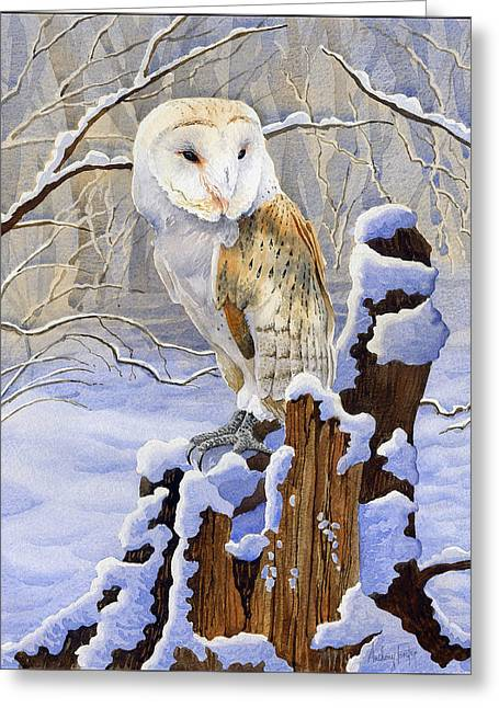 Woodland Scenes Greeting Cards - Barn Owl in Snow Greeting Card by Anthony Forster