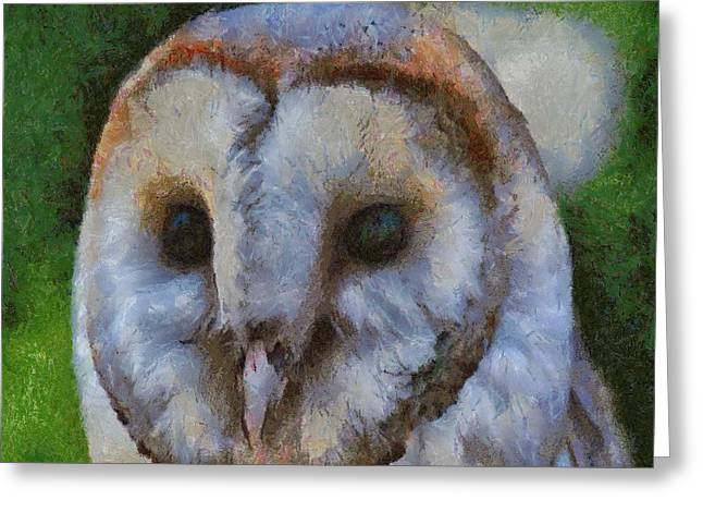 Tracey Harrington-simpson Greeting Cards - Barn Owl Greeting Card by Tracey Harrington-Simpson
