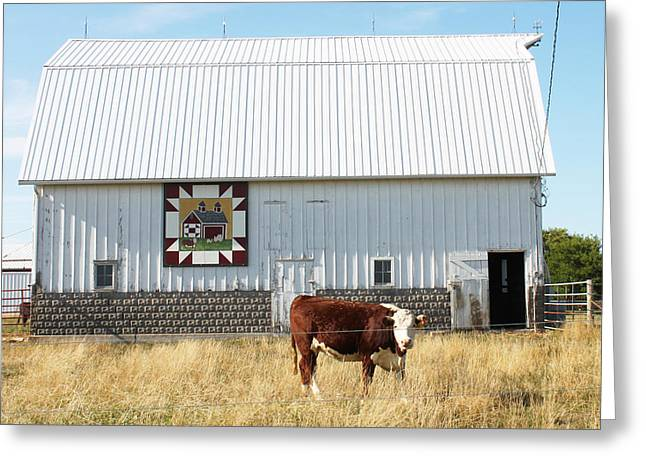 Heritage Quilts Greeting Cards - Barn Quilt Ten Greeting Card by Karen Ament