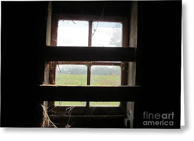 Bard Door Greeting Cards - Barn South Lower Window Greeting Card by Tina M Wenger