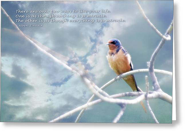 Animals Love Greeting Cards - Barn Swallow on Blue Sky with Einstein Quote Greeting Card by Julie Magers Soulen