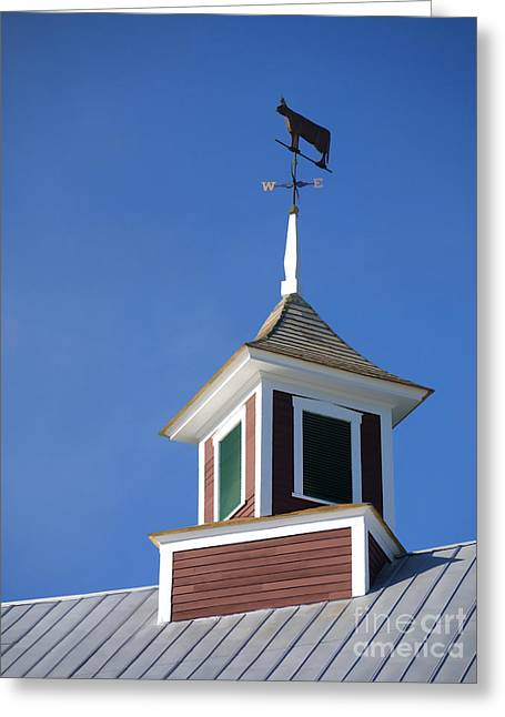 Metal Roof Greeting Cards - Barn Weathervane Greeting Card by Edward Fielding