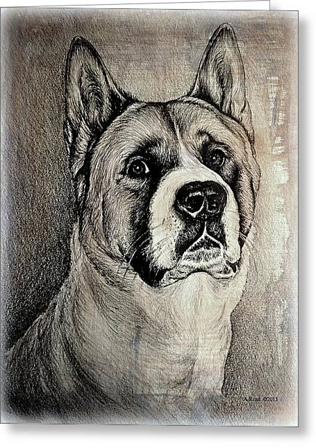 Best Friend Drawings Greeting Cards - Barney the dog Greeting Card by Andrew Read