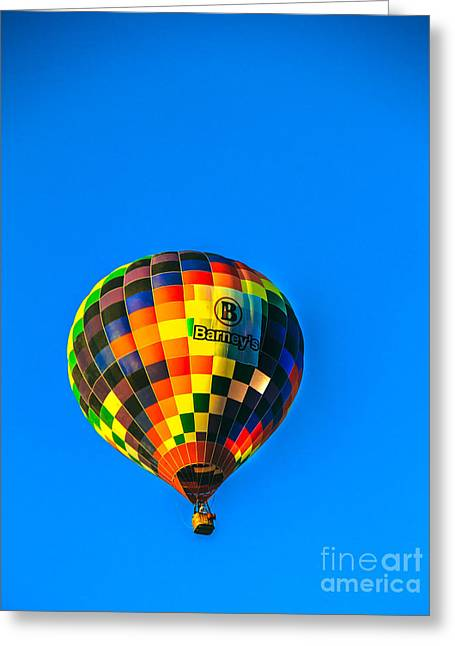 West Wetland Park Greeting Cards - Barneys Hot Air Balloon Greeting Card by Robert Bales