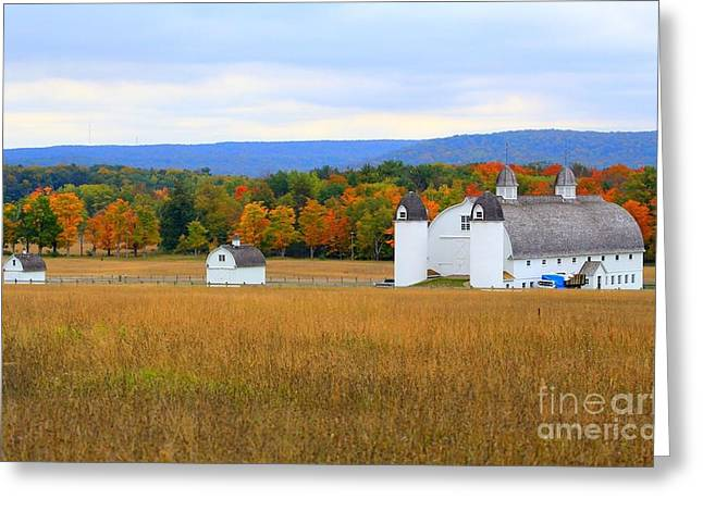 Bear Island Lighthouse Greeting Cards - Barns and Fall Color Beauty of Sleeping Bear Dunes Greeting Card by Jack  Martin