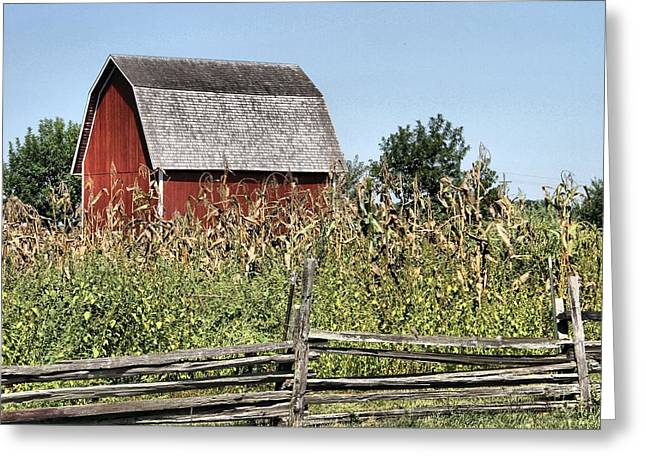 Red Roofed Barn Greeting Cards - Barns-Country Living Greeting Card by Dan Sproul