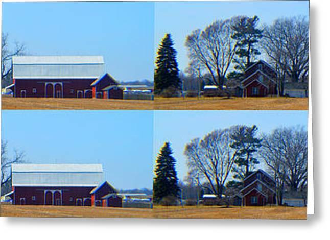 Race Horse Greeting Cards - Barns Horizon Greeting Card by Tina M Wenger