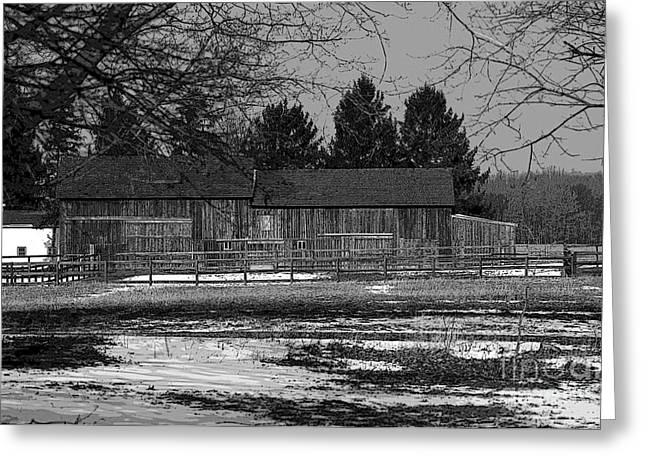 Outbuildings Greeting Cards - Barns Greeting Card by Kathleen Struckle