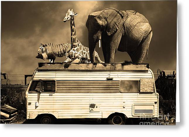 Ringling Brothers Greeting Cards - Barnum and Bailey Goes On a Road Trip 5D22705 Sepia Greeting Card by Wingsdomain Art and Photography