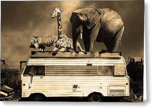 Ringling Brothers Greeting Cards - Barnum and Bailey Goes On a Road Trip 5D22705 Square Sepia Greeting Card by Wingsdomain Art and Photography