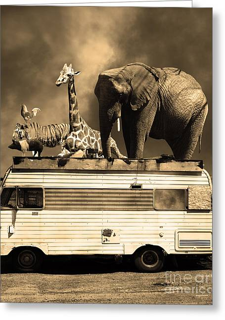 Ringling Brothers Greeting Cards - Barnum and Bailey Goes On a Road Trip 5D22705 Vertical Sepia Greeting Card by Wingsdomain Art and Photography