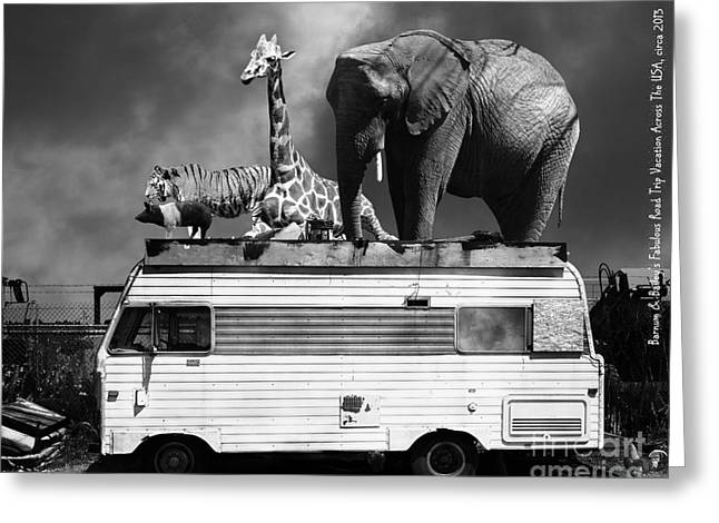 Ringling Brothers Greeting Cards - Barnum and Baileys Fabulous Road Trip Vacation Across The USA Circa 2013 22705 black white with text Greeting Card by Wingsdomain Art and Photography