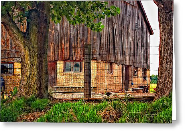 Rain Barrel Photographs Greeting Cards - Barnyard 2 Greeting Card by Steve Harrington