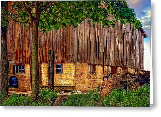 Rain Barrel Photographs Greeting Cards - Barnyard Greeting Card by Steve Harrington