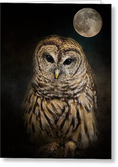 Strigidae Greeting Cards - Barred Owl and the Moon Greeting Card by Jai Johnson