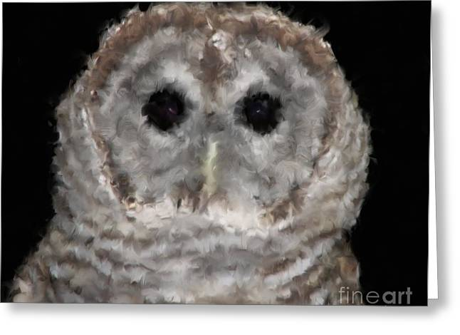 Hawk Creek Greeting Cards - Barred Owl with Oil Painting Effect Greeting Card by Rose Santuci-Sofranko