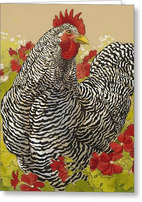 White Chicken Greeting Cards - Barred Rock Rooster in the Geraniums Greeting Card by Tracie Thompson