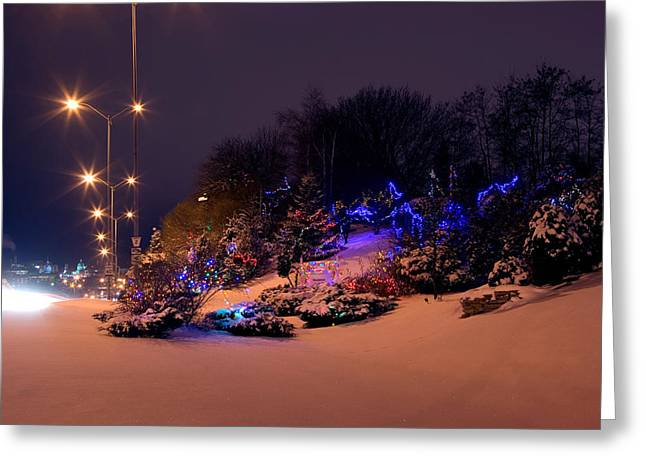 Paul Wash Greeting Cards - Barriefield Rock Garden Christmas Lights Greeting Card by Paul Wash