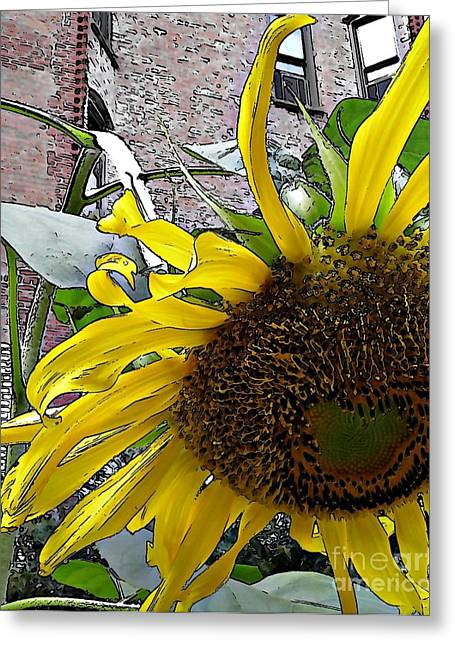 Green And Yellow Digital Greeting Cards - Barrio Sunflower 3 Greeting Card by Sarah Loft