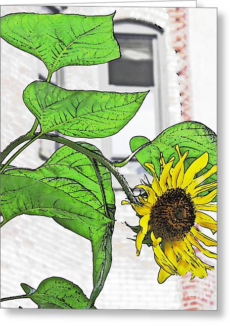 Green And Yellow Digital Greeting Cards - Barrio Sunflower Greeting Card by Sarah Loft