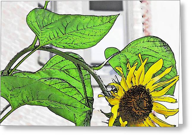 Barrio Sunflower Greeting Card by Sarah Loft