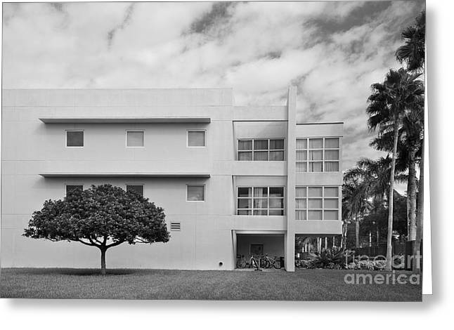 Barry Styles Greeting Cards - Barry University Student Union  Greeting Card by University Icons