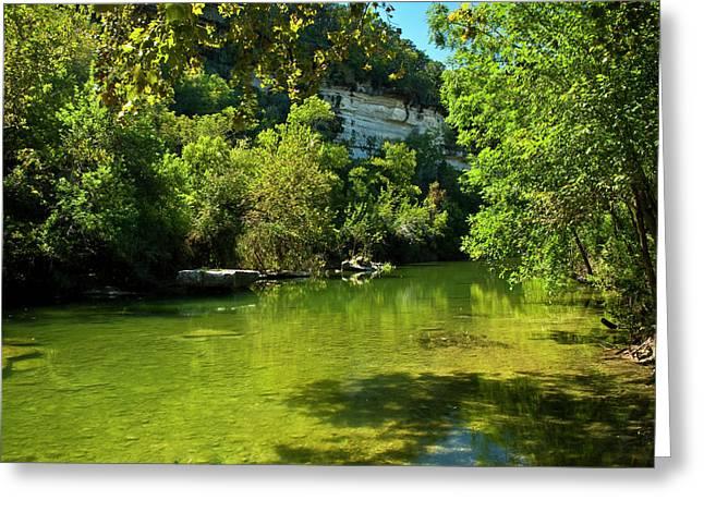 Barton Creek Greenbelt  Greeting Card by Mark Weaver
