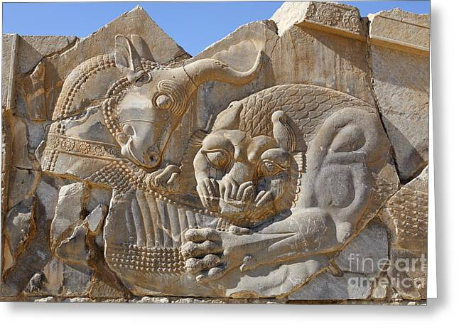 Ancient Persian Art Greeting Cards - Bas relief carving of a lion hunting a bull at Persepolis in Iran Greeting Card by Robert Preston