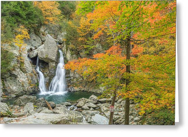 Massachusetts Greeting Cards - Bash Bish Falls Autumn Greeting Card by Bill  Wakeley