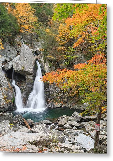 The Berkshires Greeting Cards - Bash Bish Falls Portrait Greeting Card by Bill  Wakeley