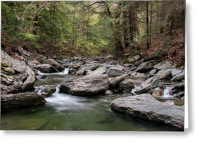 Western Massachusetts Greeting Cards - Bash Bish River  Greeting Card by Thomas Schoeller