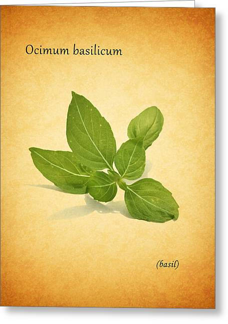 Beverage Greeting Cards - Basil Greeting Card by Mark Rogan