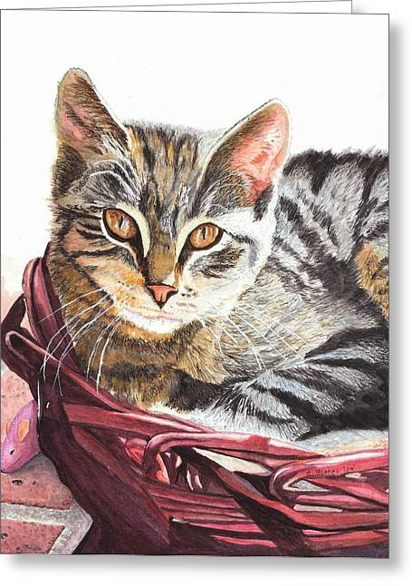Cat With A Basket Greeting Cards - Basket Case Greeting Card by Steph Bucci