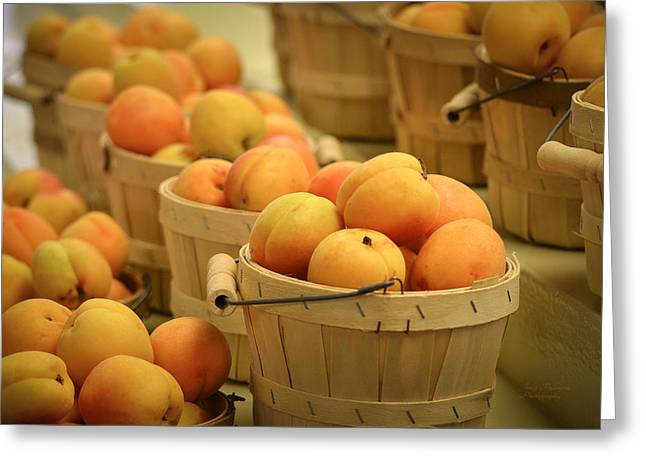 Apricot Greeting Cards - Baskets of Apricots Greeting Card by Julie Palencia