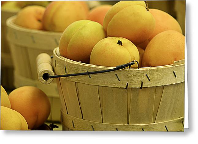 Farm Stand Greeting Cards - Baskets of Apricots Squared Greeting Card by Julie Palencia