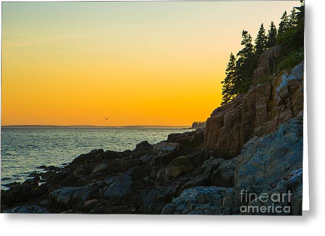 Maine Islands Greeting Cards - Bass Harbor  Greeting Card by Diane Diederich