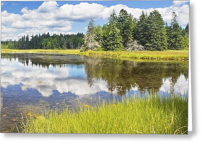 Wetland Greeting Cards - Bass Harbor Marsh - Summer - Acadia National Park - Maine Greeting Card by Keith Webber Jr