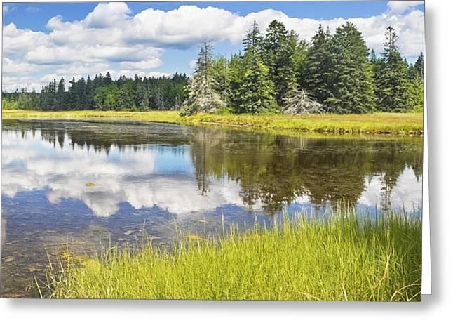 Bass Harbor Greeting Cards - Bass Harbor Marsh - Summer - Acadia National Park - Maine Greeting Card by Keith Webber Jr